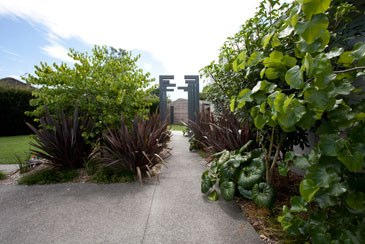 Gumbootgirl landscape design hamilton new zealand for Landscape architecture new zealand